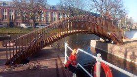 Bridges of Singelpark Leiden